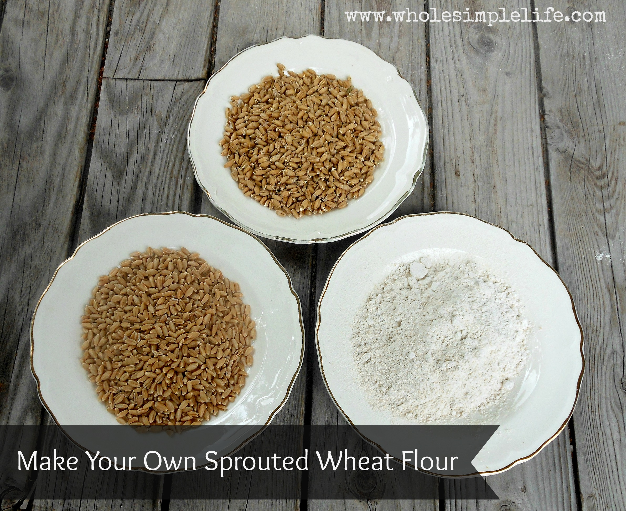 How To Make Your Own Sprouted Wheat Flour - anxiety