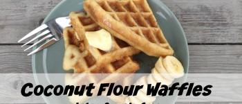 Coconut Flour Waffles (gluten & grain free)
