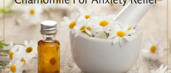 Chamomile For Anxiety Relief